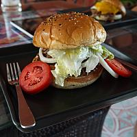 Large BBQ Shredded Chicken Sandwich