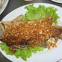 Fried snapper with garlic