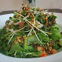 Herbal Salad