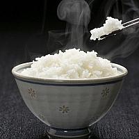 rice 米饭