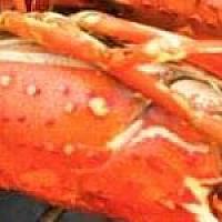 Lobster Big