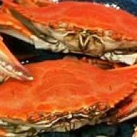 BBQ/Steamed Blue Crab (2 pieces/dish)