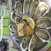 OYSTERS ONLY DEC,JAN,FEB