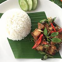 Stir fry basil leave with pork or  chicken served with steam rice