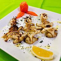 Calamari  grilled