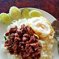 Tod kratian prik thai moo/kai/mookrob