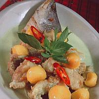 White Snapper Green Curry