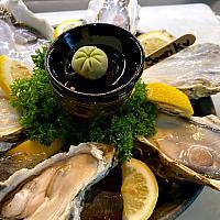 Sanriku Coast Oysters x6