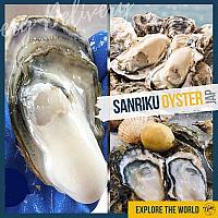 5 Packs of Premium Sanriku Frozen Oyster 45-47pcs