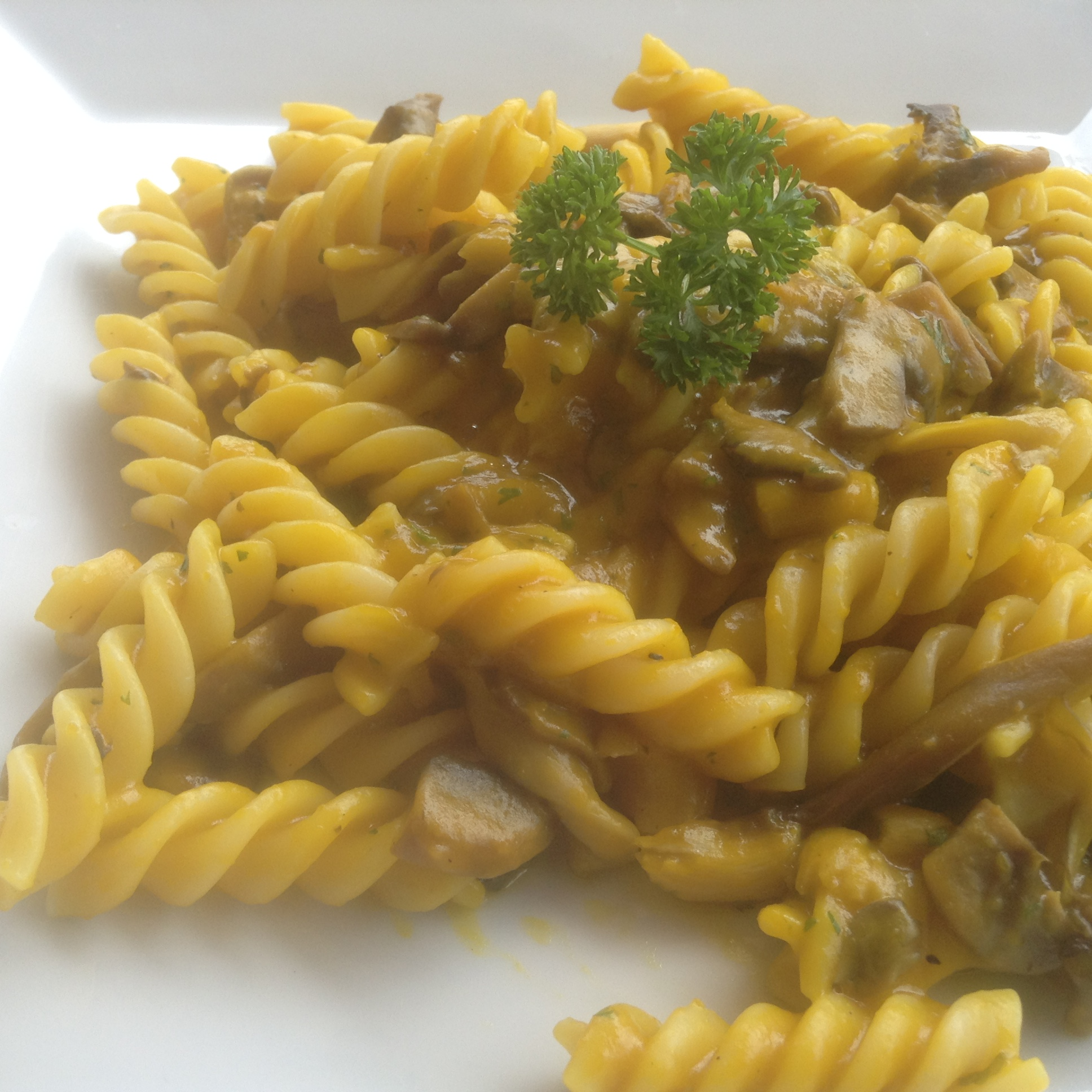 Fettuccine Porcini Mushrooms
